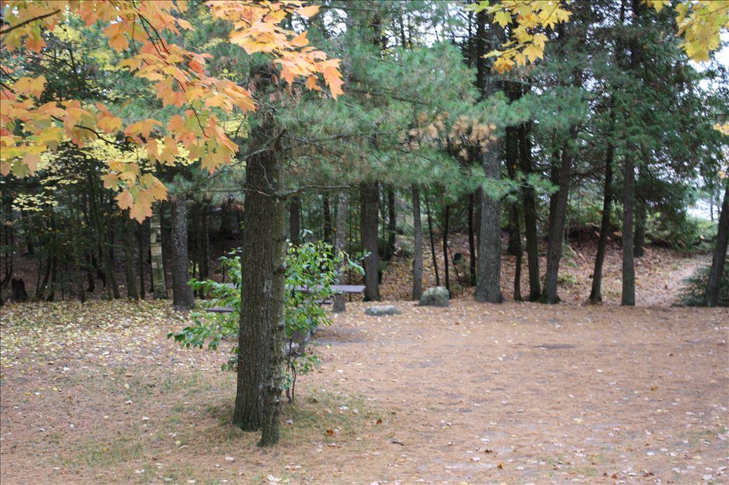 Big Knob State Forest Campground Michigan Water Trails