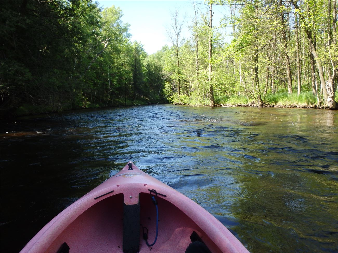 Paddling on the White River