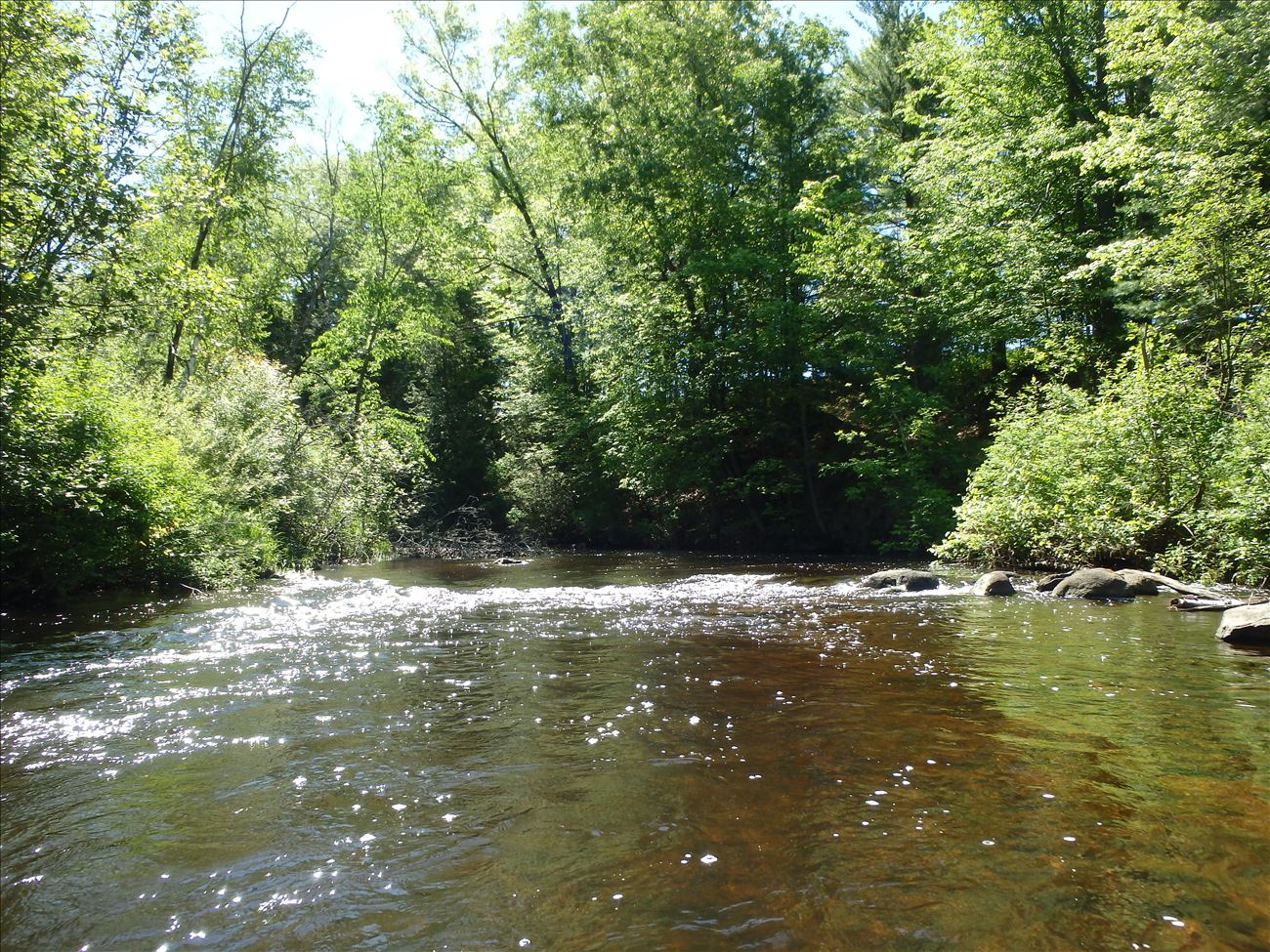White River near White Cloud Michigan